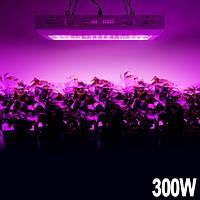 Фитопанель для растений 300W (10 полных спектров, 8000LM) - замена ДНАТ, ДНАЗ