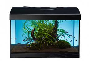 Diversa Startup LED Expert 40 аквариум прямой (25л)