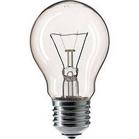 Лампа накаливания PHILIPS стандартная 100W E27 230V A55 CL, фото 1