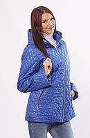 Женская демисезонная куртка  Murenna электрик 30-52 размеры