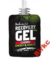 BioTech USA Recovery Gel 60 g.-tube