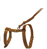 Шлея Collar для кошек с поводком кожаная