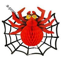Декор Павук 3D з павутиною