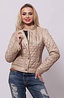 Короткая женская осенняя куртка  СК-1 бежевая 42-50 размеры