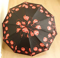 Женский зонт Star rain автомат, 10 спиц, фото 1
