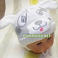 Детская зимняя вязанная термо шапочка р. 42 на завязках для новорожденного ТМ Мамина мода 3214 Белый