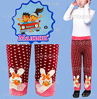 Детские красивые штанишки на меху Nanhai C1065 S-R