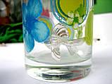 Серебряный ионизатор воды Золотая рыбка, фото 3