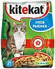 Kitеkat (Китикет) cухой корм для взрослых кошек Улов рыбака 13 кг
