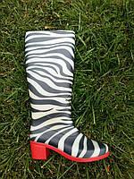 Сапоги женские резиновые на каблуке Литма