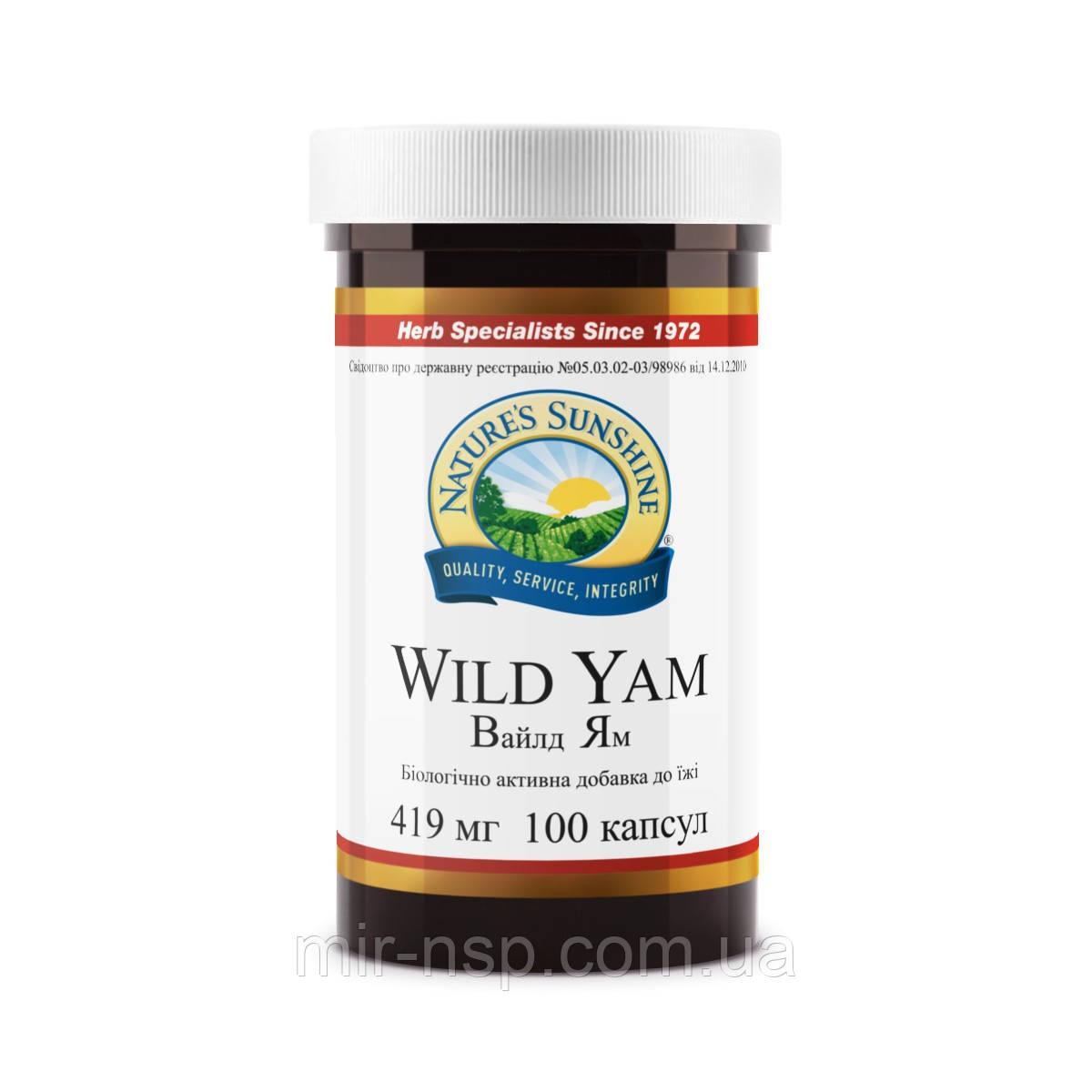 Дикий ямс (вайлд ям, диоскорея, Wild Yam) бад компании NSP