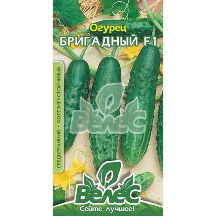 Семена огурца Бригадный F1 0,5г ТМ ВЕЛЕС, фото 2