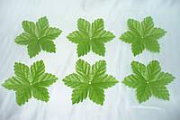 Подлистник зеленый 6ка резной