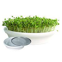 Проращиватель Eschenfelder для семян микрозелени, 12 см, фото 1