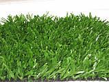Футбольна трава, фото 3