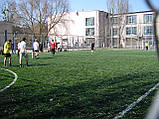 Штучна трава Limonta (Італія), фото 4