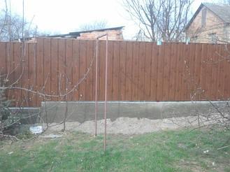 Забор из профнастила под дерево 5