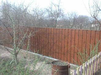 Забор из профнастила под дерево 4