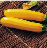 Купить семена Елоу Хаус F1 семена кабачка желтого 500 шт. цена