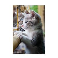 Настенный обогреватель-картина Трио Котята
