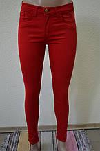 Цветные женские брюки красные 3256