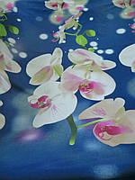 Ранфорс с 3д-рисунком Орхидеи и на синем фоне