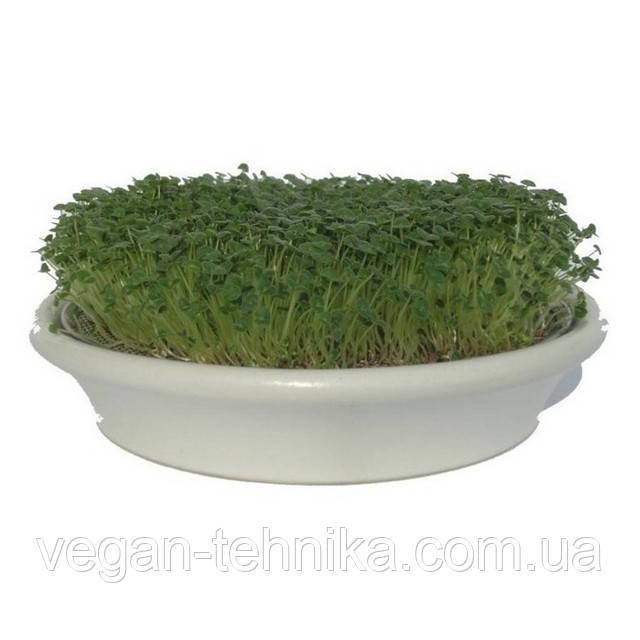 Проращиватель Eschenfelder для кресс-салатов, семян микрозелени, 21.5 см