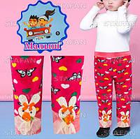 Детские красивые штанишки на меху Nanhai C1058 S-R