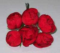 Ранункулюсы 2,3 см красные