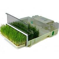 Микроферма EasyGreen (проращиватель семян)