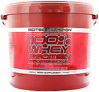 Протеин Scitec Nutrition Whey Protein Proffesional (5 kg)