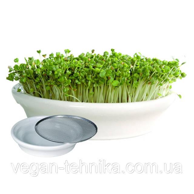 Проращиватель Eschenfelder для семян микрозелени, кресс-салатов, 12 см