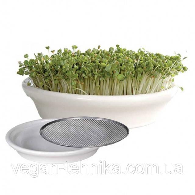 Тарелка для проращивания кресс-салатов Eschenfelder, 16 см