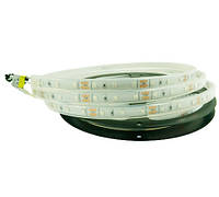 Жовта світлодіодна стрічка 2835-60-IP65-Y-11-12 RN1160TA-B e-pcb