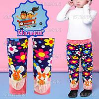 Детские красивые штанишки на меху Nanhai C1056 S-R