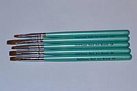 Набор кистей для китайской росписи ногтей ( 5 шт)