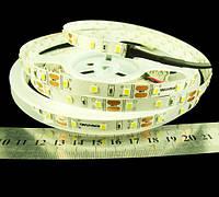 Світлодіодна стрічка  2835-60-IP65-CWb-10-12 RN6060TA-B e-pcb , білий-холодний