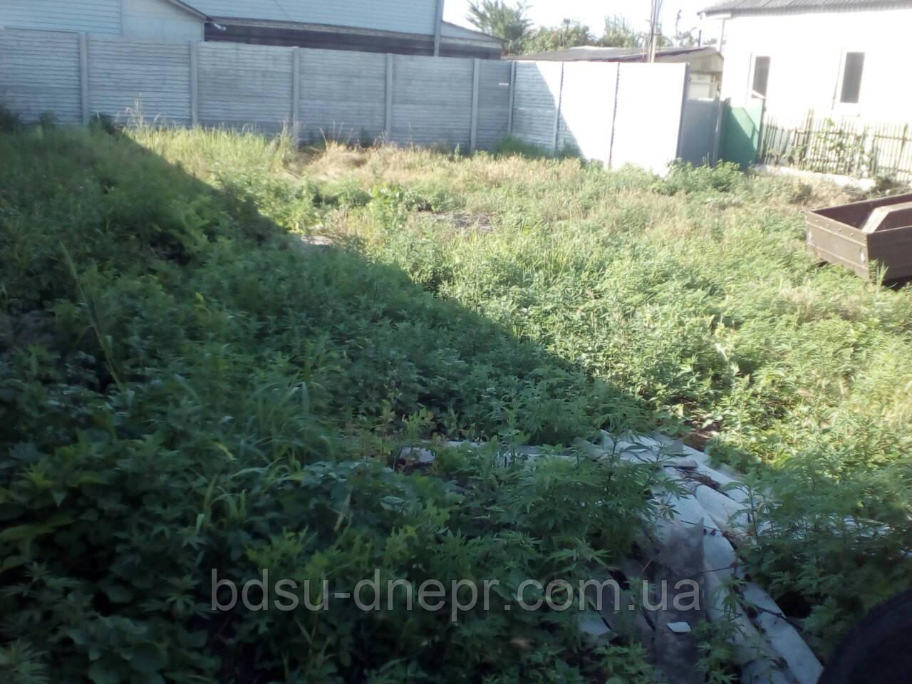 Уборка дачного участка, корчёвка пней  в Днепропетровске