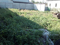 Уборка дачного участка, корчёвка пней  в Днепропетровске, фото 1