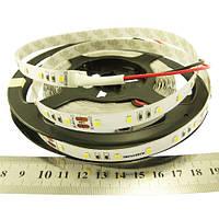 Світлодіодна стрічка RISHANG RN0060TC-A 2835-60-IP33-CWd-10-24 холодно-біла 12Вт 24 вольт 956лм 7607