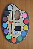 Краска акварель палитра АР  + кисточка 12 цветов