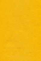 Фетр листовой (вискоза) 20х30 см, Желтый темный, 150 г/м2, Knorr Prandell, 61
