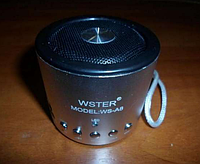 Музыкальная портативная колонка WS-A8