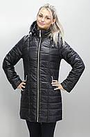 Осенние куртки 40-74 размеры разные цвета