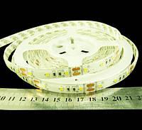 Світлодіодна стрічка 2835-60-IP65-CWd-10-12 R6060TA-A, білий-холодний