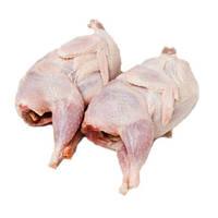 Перепела, мясо (замороженное) перепелов бройлерной породы
