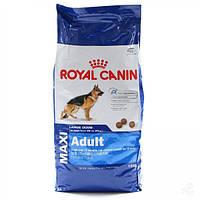 Royal Canin Maxi Adult сухой корм для собак больших пород до 5 лет 15 кг