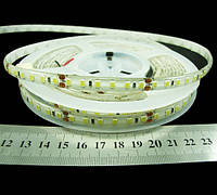 Світлодіодна стрічка 2835-120-IP66-CWd-8-24 R68C0TC-C, холодно-білий, 24В