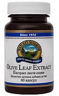 Экстракт листьев оливы(Olive Leaf Extract )- улучшает состояние иммунной  системы