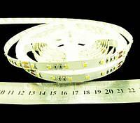 Світлодіодна стрічка 2835-60-IP33-WW-10-24 R0060TC-A, тепло-білий, 24В